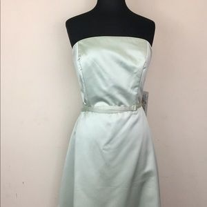 NWT Alfred Angelo Mint Green Gown